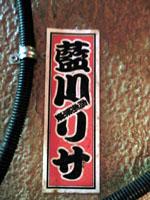 CIMG1065_mini.jpg
